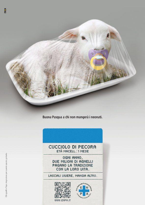 Enpa e la Campagna per Pasqua 2012 -