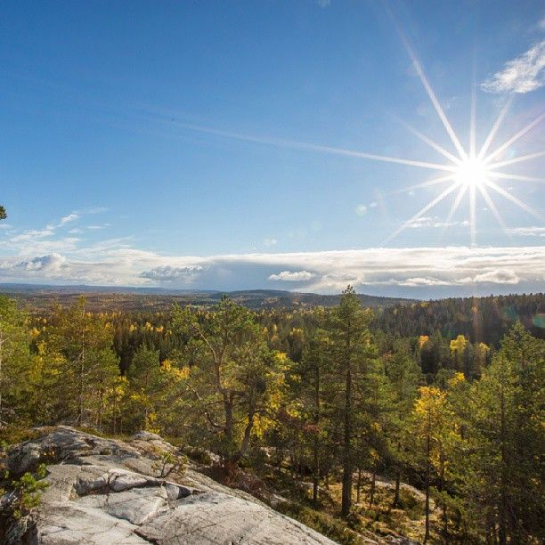 #beautiful #finnish #nature #autumn #perfect #getaway #Finland #sunshine #colorsoffall #luxury #holidays #villepic