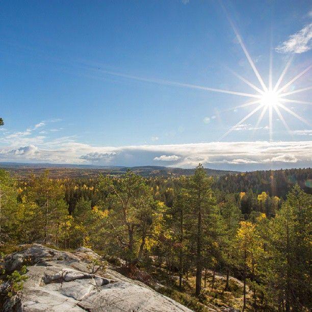 #beautiful #finnish #nature #autumn #perfect #getaway #Finland #sunshine #colorsoffall #luxury #holidays #villepic