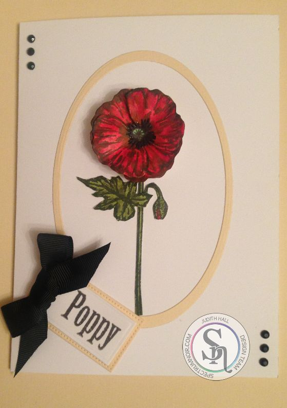 Designed by Judith.  #spectrumnoir #crafting