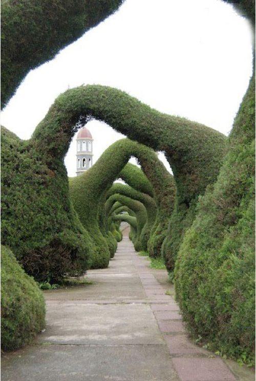 Costa Rica - Zarcero Garden | Read More Info