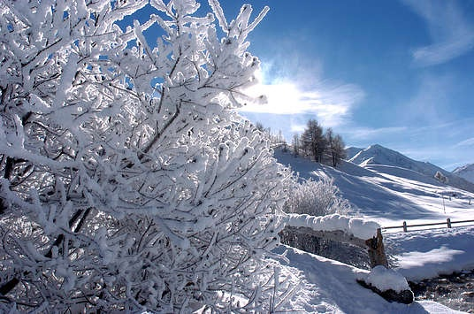 Icy landscape.