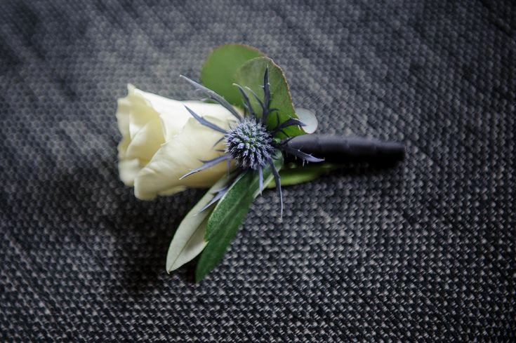English White Rose & Scottish Blue Thistle Buttonhole | Glamorous Contemporary Wedding | Scottish Wedding At Mansfield Traquair In Edinburgh | Images by Elemental Photography | http://www.rockmywedding.co.uk/yvette-andy/