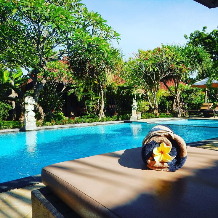 You've got to have a good pool at your hotel in Bali. It's up there with security, cleanliness & location when I'm booking my accommodation. . Tirta Sari Bungalows Pemuteran is perfection. @tirtasaribungalows . Check out my Facebook page for my latest trip report.