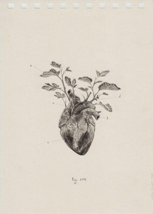 "misswallflower: ""by Juan Osorno """