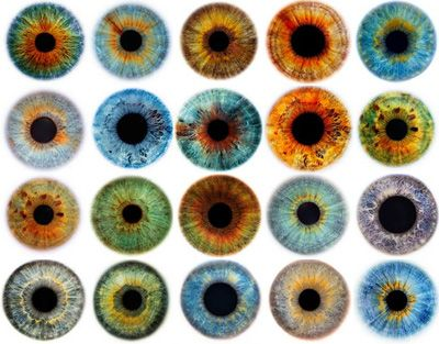 rankin's eyescapes. i love eyes. they're so pretty.