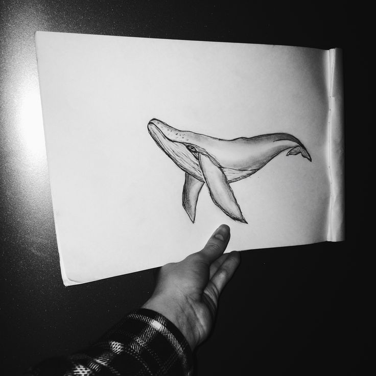 Whale  Tattoo ✨