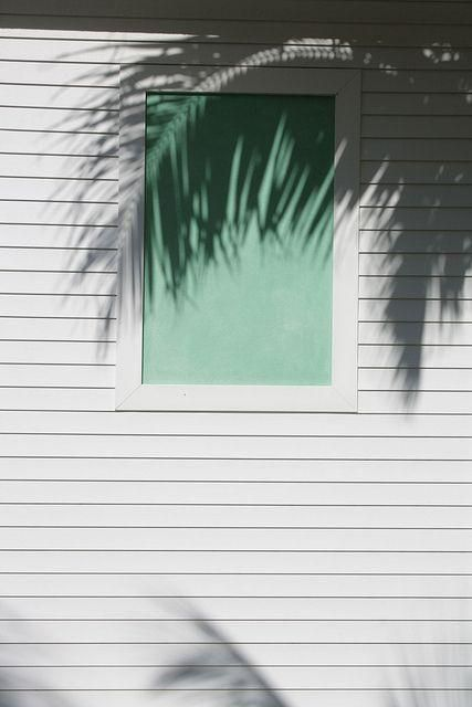 In the shadow of the palms | Image via Juan Martinez