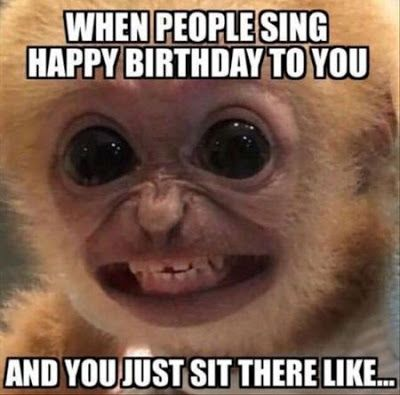 Best Happy Birthday Funny Ecards Humorous Quotes For Her - 49 hilarious pictures people animals
