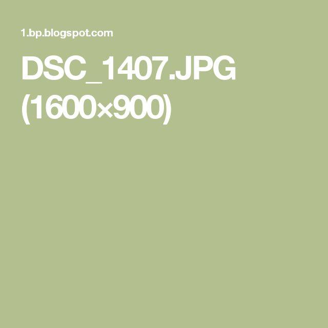 DSC_1407.JPG (1600×900)
