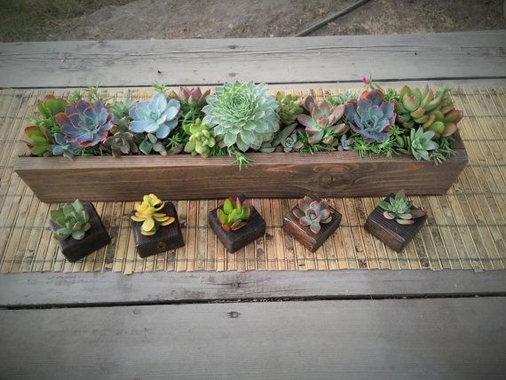 """Succulent arrangement in long Rustic wood planter box 20""""-colorful live succulents. Window or Wedding table. Add to centerpiece with favors"""