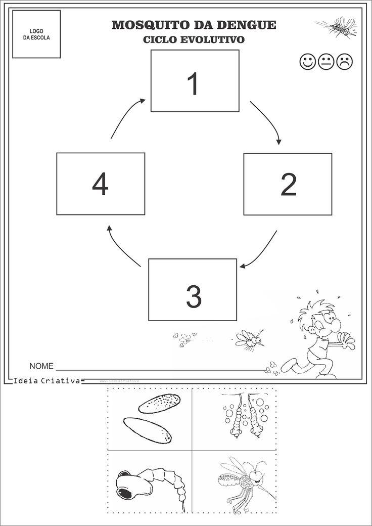 Atividades Combate à Dengue e Ciclo Evolutivo Aedes Aegypti para Educação Infantil