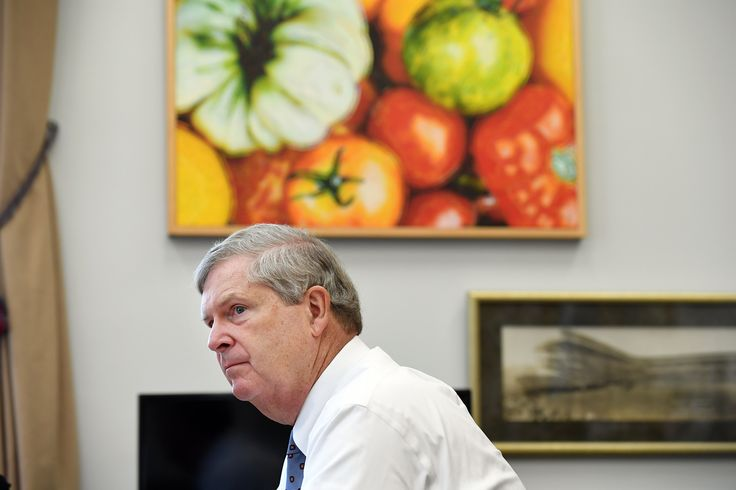 Tom Vilsack's lonely fight for a 'forgotten' rural America
