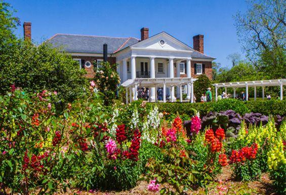 693dcae20df820931b1ccbe5285fc1fc - Boone Hall Plantation & Gardens Charleston Sc