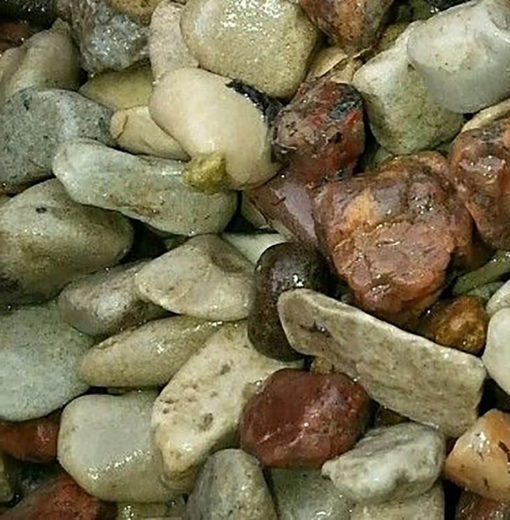 "Amazon.com : Safe & Non-Toxic {Small Size, 0.25"" Inch} 50 Pound Bag of Gravel & Pebbles Decor for Freshwater Aquarium w/ Natural Simple Rustic River Inspired Smooth Earth Toned Style [Tan, Red & Gray] : Pet Supplies"