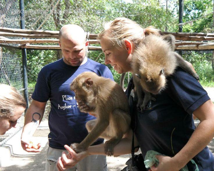 Wonderful Rustic Wildlife Park - Phnom Tamao Wildlife Rescue Center, Phnom Penh Traveller Reviews - TripAdvisor