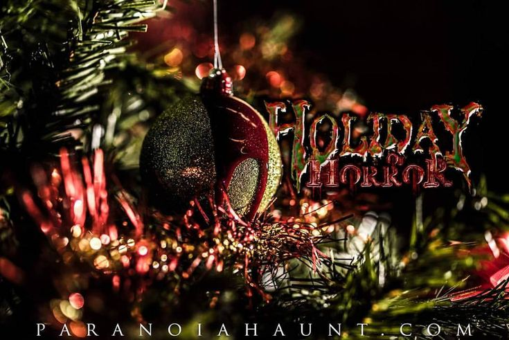 """33 Likes, 1 Comments - Paranoia Haunted House (@paranoiahauntedhouse) on Instagram: """"Our gates open tonight at 8 for the Holiday of Horror! Don't forget to bring your camera for our…"""""""