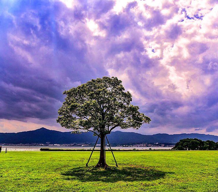 今日は暑さも昨日よりマシでした(^ー^)ノ でも暑かったです^^; 午後からは暗雲垂れ込めて怪しい雲行き〜のゲリラ豪雨でした。・°°・(>_<)・°°・。 梅雨明けも早まりそうな気配が…(^_^)☆ #sky #skylovers  #loves_nature  #naturelovers  #igersjp  #ig_nature  #nikond750  #wu_japan  #team_jp_西  #team_jp_  #tokyocameraclub  #totalsky #phos_japan  #ptk_nature  #ファインダー越しの私の世界  #写真好きな人と繋がりたい  #カメラが好きな人と繋がりたい  #loves_nature #gobiwako #しがトコ