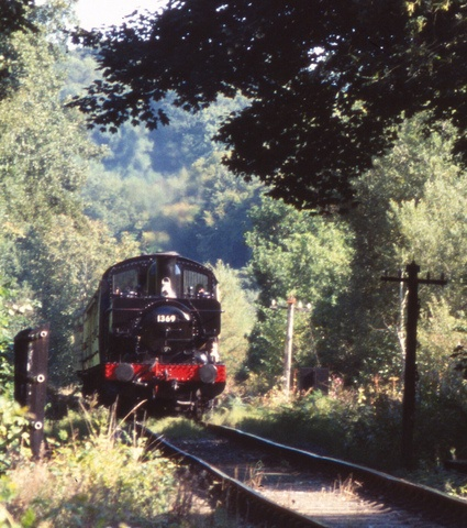 We have a car waiting when we get to Devon or Dartmouth. Isn't this fun riding on the South Devon Railway?.................