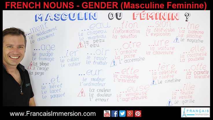 SUPPORT GUIDE French Nouns – Gender of Nouns (Masculine Feminine). VIDEO+TRANSCRIPT here: https://www.francaisimmersion.com/french-nouns-gender/