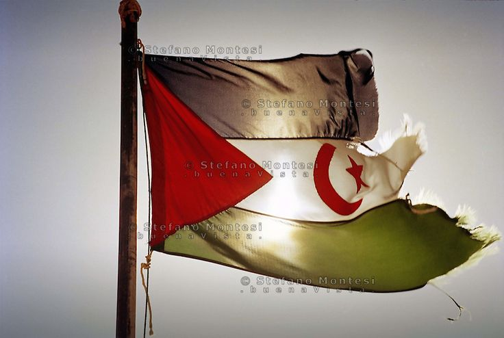 Campo Profughi Saharawi di Rabuni.La bandiera Saharawi.Saharawi refugee camp of  Rabuni.The flag of the Sahrawi..