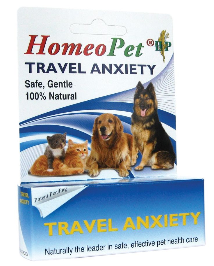 Homeopathic remedy provides relief for Motion sickness