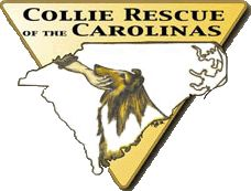 Collie Rescue of the Carolinas. Wonderful, sweet Collies available for adoption.