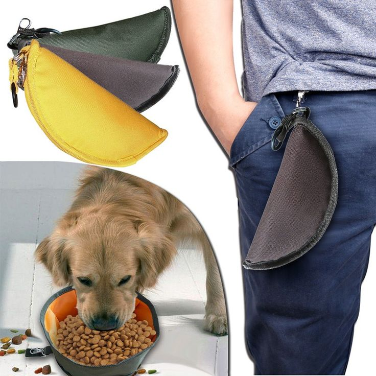 When travelling or hiking with your dog it's important to keep them hydrated, so make sure you carry a collapsible bowl around so you can give your dog water at any time!