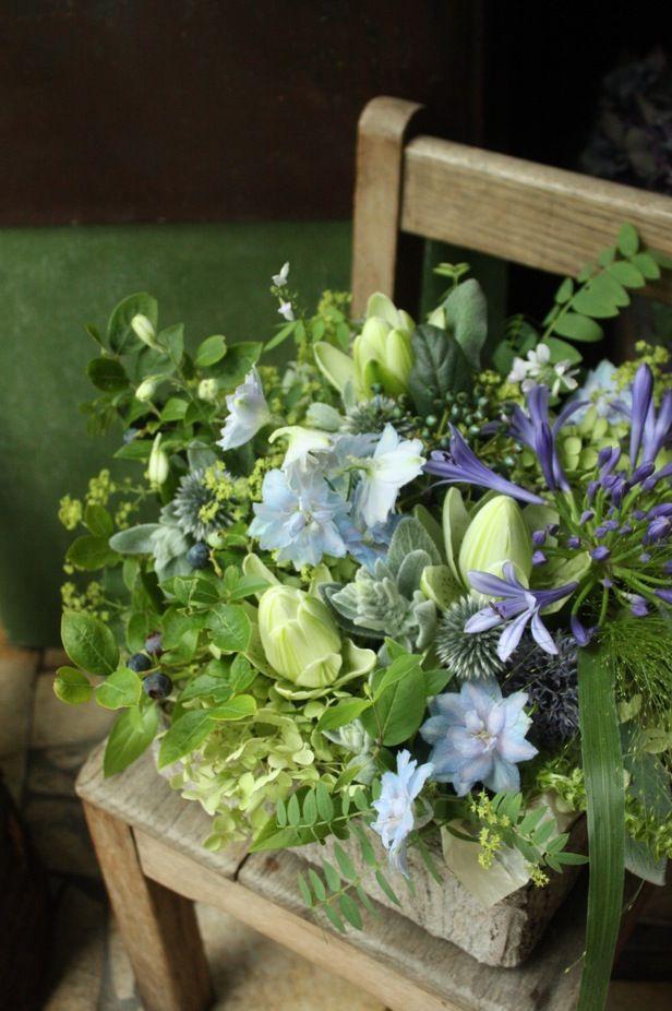 Staff blog: 旬の植物たち                                                       …