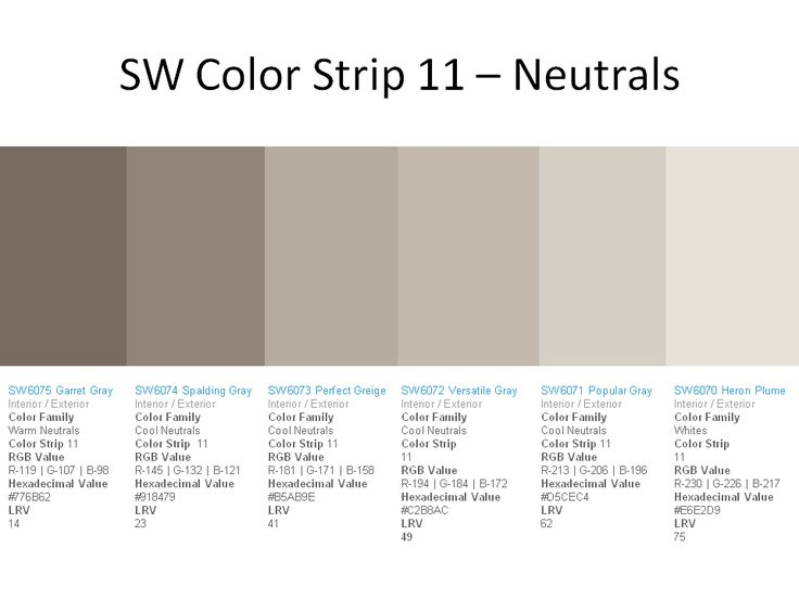 Sw color strip 11 garrett gray sw 6075 spalding gray sw for Popular grey paint sherwin williams