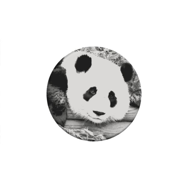 Panda Bear Expanding Stand and Grip for Smartphones and Tablets a Portion of the Proceeds will be donated to the World Wildlife Foundation