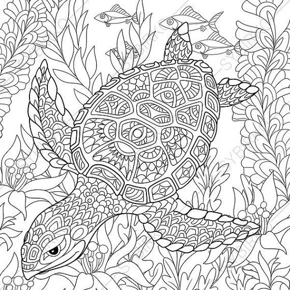 Adult coloring pages turtle zentangle doodle coloring pages for adults digital illustration instant download print