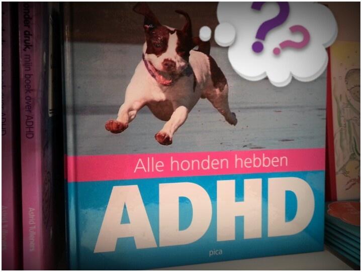 In Nederland worden zo'n 2,2 miljoen honden als huisdier gehouden...  Die van ons is de titel zeker waardig.