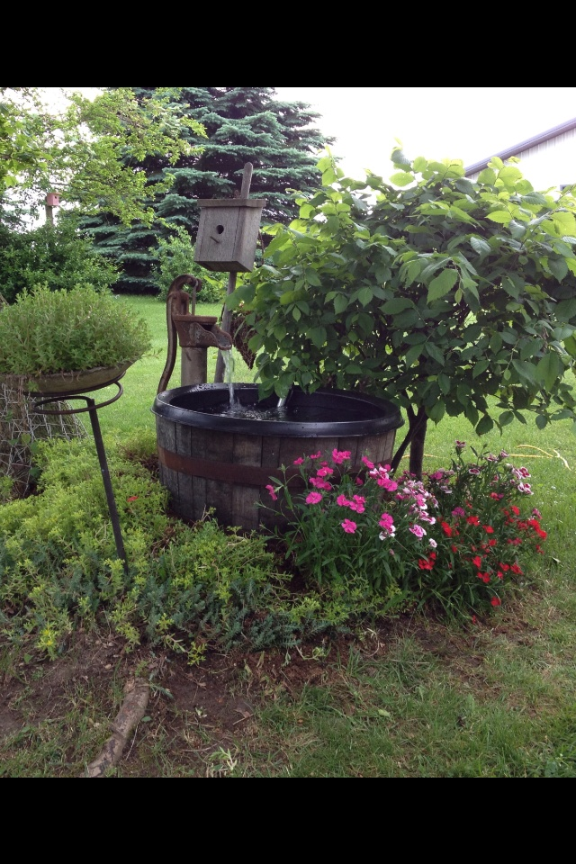 32 best Wine Barrel Ponds images on Pinterest   Backyard ideas ...
