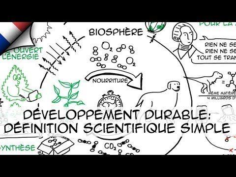 Développement durable: définition scientifique simple (Ep.1) - YouTube