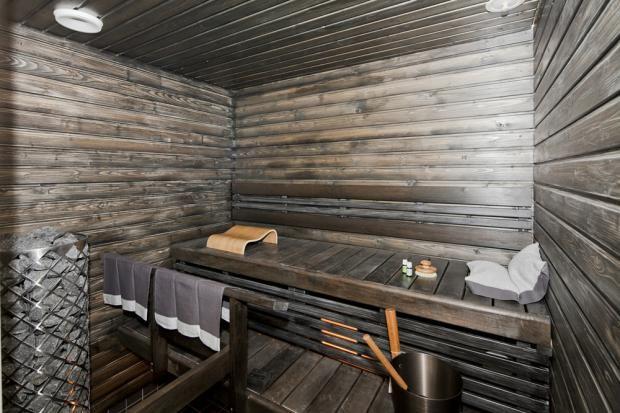 Hakkio ja Arvola - Sauna   Asuntomessut