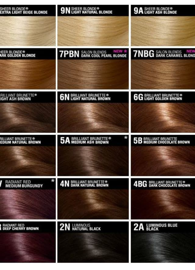 What Will My Future Child Look Like Brown Hair Chart Hair Color Chart Hair Color Shades