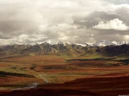 Tundra during the fall in Denali National Park, Alaska. Source. Posted 24th November 2012 by Luis Sanchez