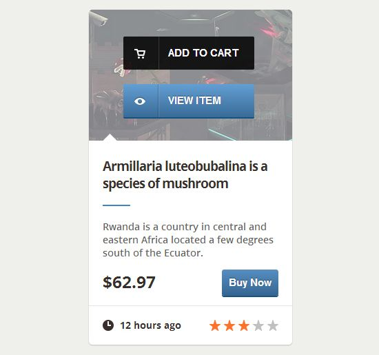 E-Commerce Web Element with CSS3
