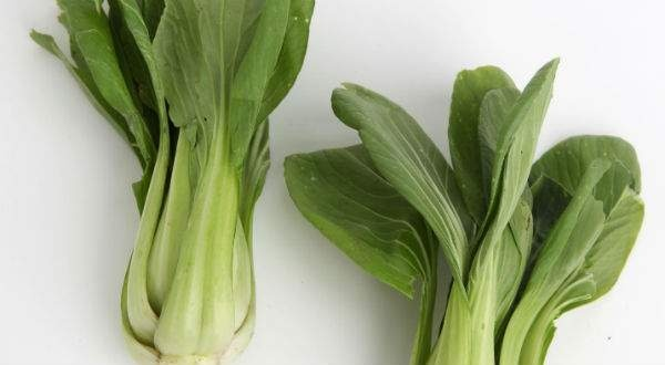 week at the market: Baby bok choy with cashews - LivewellNebraska.com ...