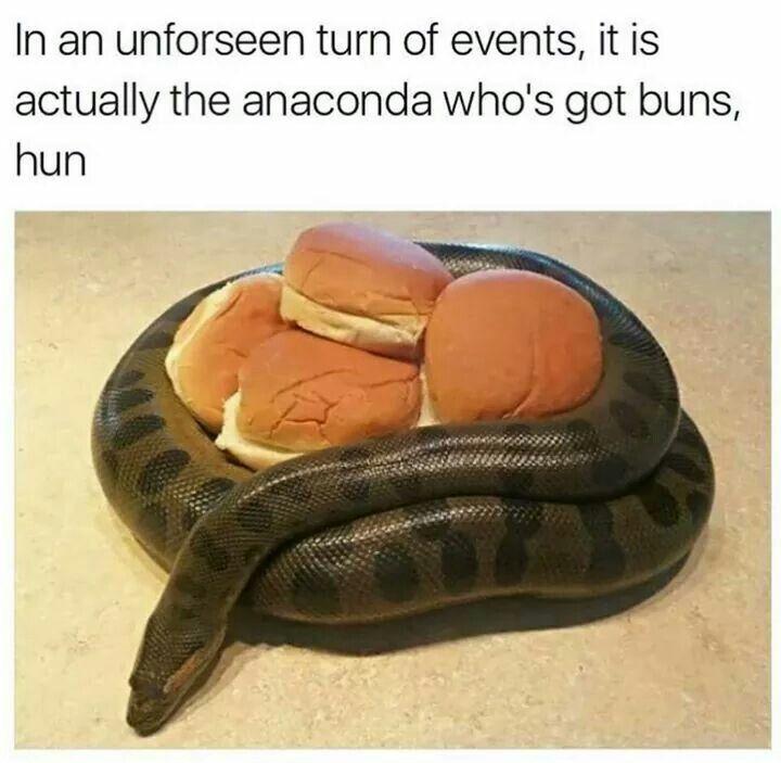 My anaconda don't, my anaconda don't, MY ANACONDA DONT. WANT. NONE. UNLESS. YOU. GOT, BUNS. HUUUUUNNN