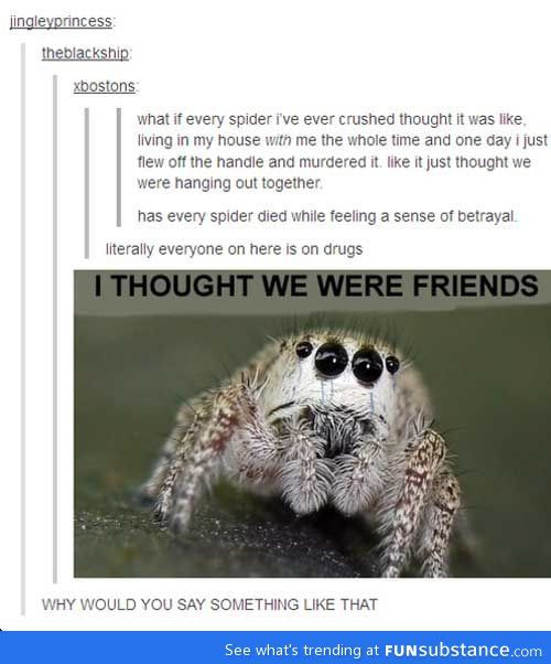 Sad Quotes About Depression: 17 Best Ideas About Killing Spiders On Pinterest