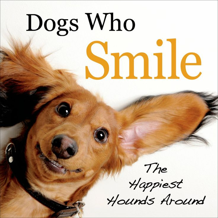 Dogs Who Smile: The Happiest Hounds Around, by Virginia Woof