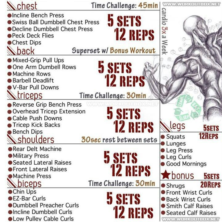 Looking for a workout routine to challenge you and help you get a ripped