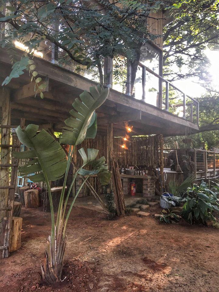 Die Boomhuis, Brakpan South Africa. Treehouse