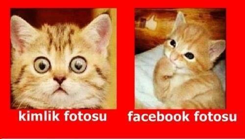 profil fotosu