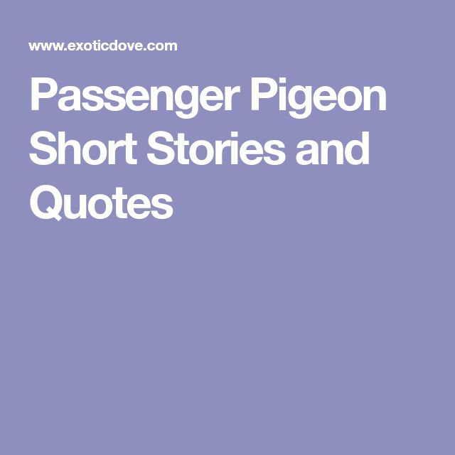 Passenger Pigeon Short Stories and Quotes