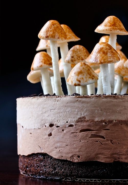 Chocolate Truffle Mousse Cake w/ Meringue Mushrooms