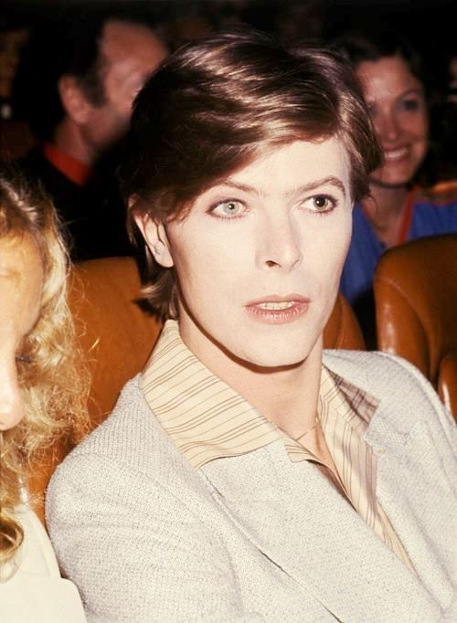 Conversation Piece....I think this was taken at a VIP gala premiere of The Man Who Fell To Earth held at the Gaumont Élysées Theatre, Paris in June 1977....that's actress Sydne Rome next to DB....