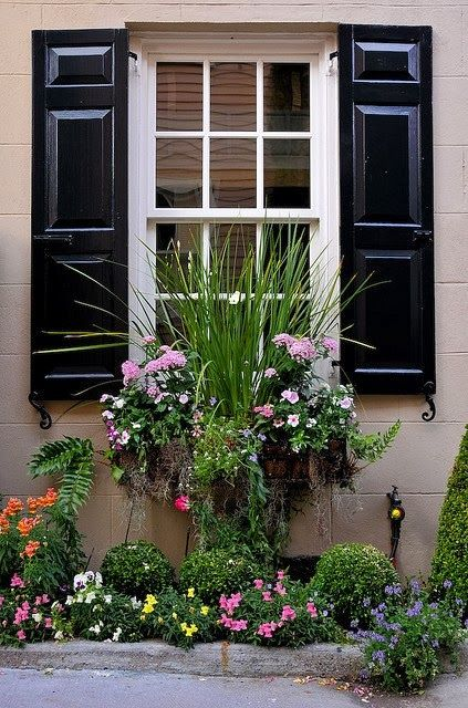 LOVE the tall grass in the middle. Need to do this next year! Judy's Cottage Garden: Container Gardens